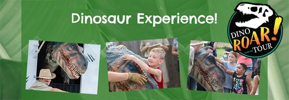 Dinosaur Experience
